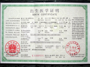 Certified Translation of Birth Certificate in Shanghai